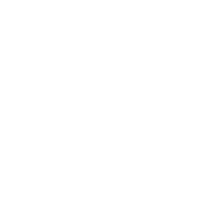 Great Professional Graphic Design San Diego California Art Logo Kyle Zimmerman